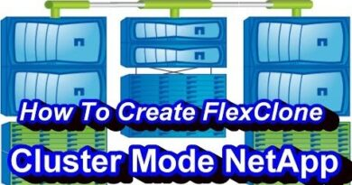 What Is FlexClone In NetApp Cluster Mode