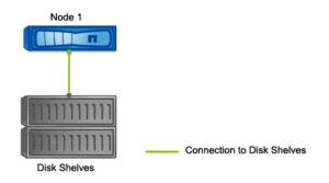 Single Node NetApp Cluster Mode Hardware Architecture